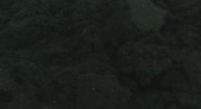 Nero di Seppia, fine