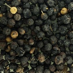 Ripe Buckthorn Berries