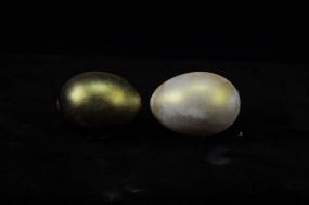 IRIODIN® 307 STAR GOLD, Colibri, fein