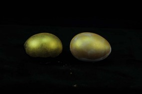 IRIODIN® 9307 STAR GOLD SW, Colibri, feinst