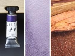 Lutea Pflanzen-Wasserfarbe Violett