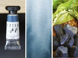 Lutea Pflanzen-Wasserfarbe Blau