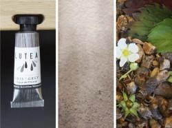 Lutea Pflanzen-Wasserfarbe Grau