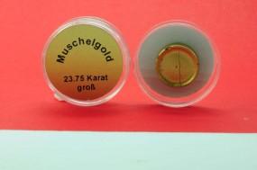Muschelgold groß
