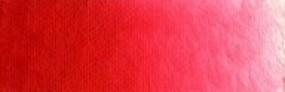 Scheveningen Rot mittel